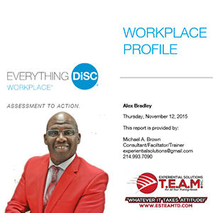Experiential-Solutons-Everything-Workplace-Profile-Coaching